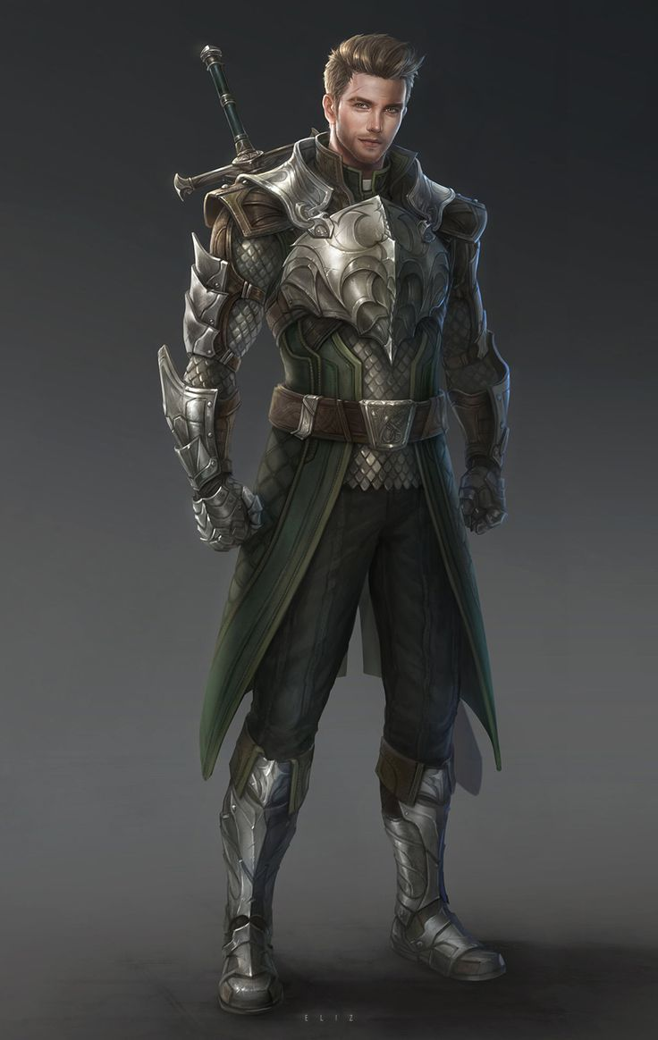 Dragon Knight by eliz7 fighter paladin soldier broad sword plaemail scale armor clothes clothing ...