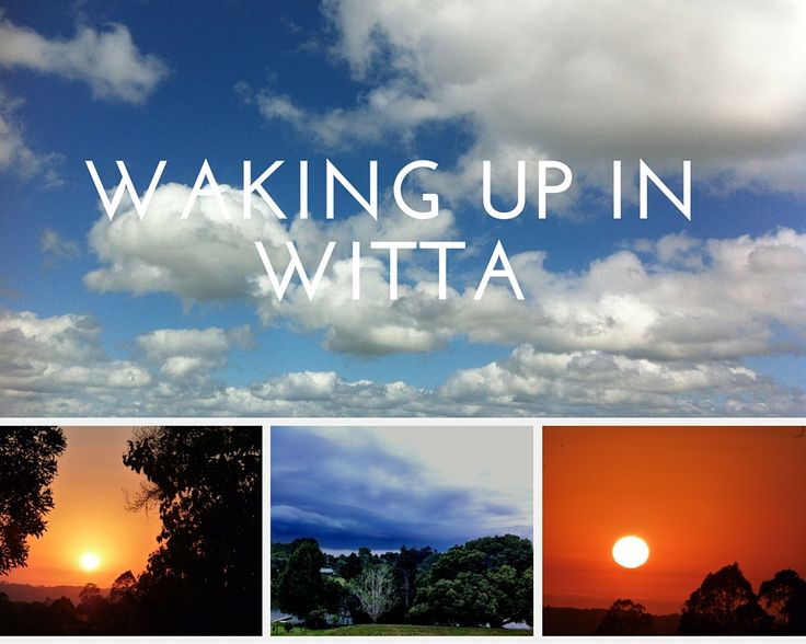 """The story of how I became a photographer and writer-  click on the photo to find out how I """"Woke"""" up in Witta."""