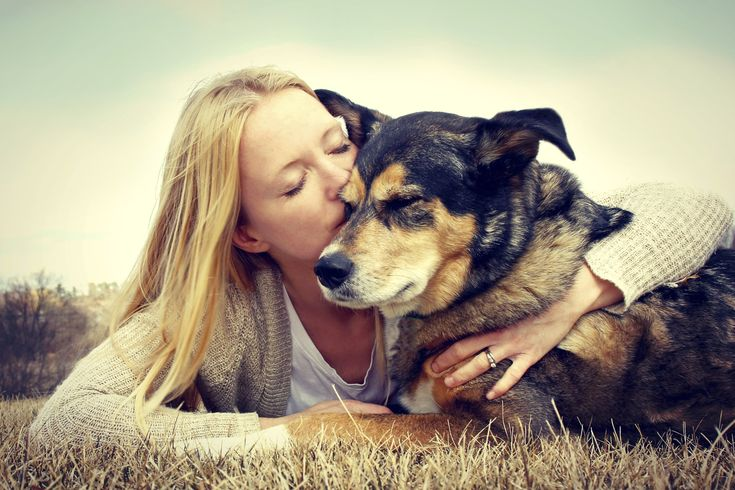 L'attachement du chien pour son maître