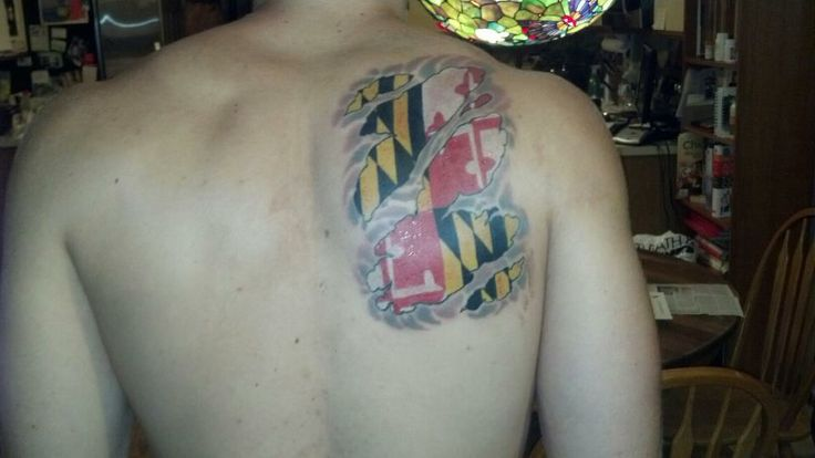 1000 images about maryland tattoos on pinterest for Maryland crab tattoo