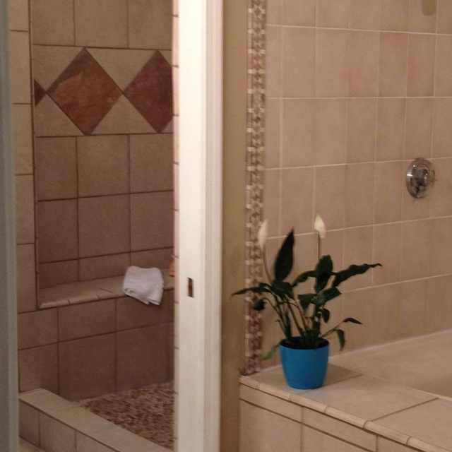 Shower Bathroom Ideas Pinterest