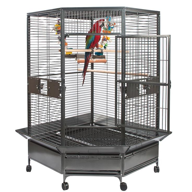 Rainforest Toronto Large Corner Parrot Cage. Make your parrot at home in the corner of your room.  http://parrotize.co.uk/birdcages/rainforest-toronto-corner-large-parrot-cage/