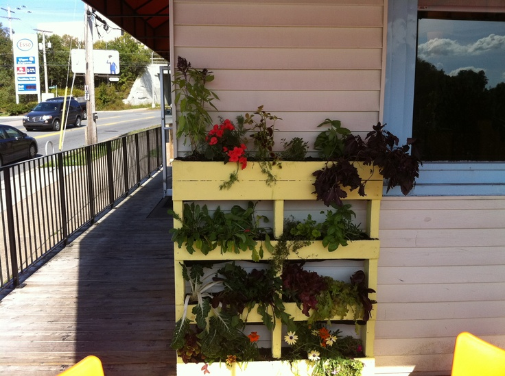 Pallet Garden Ideas vertical wood pallet garden httplifeonthebalconycomhow to Find This Pin And More On Pallet Garden Ideas