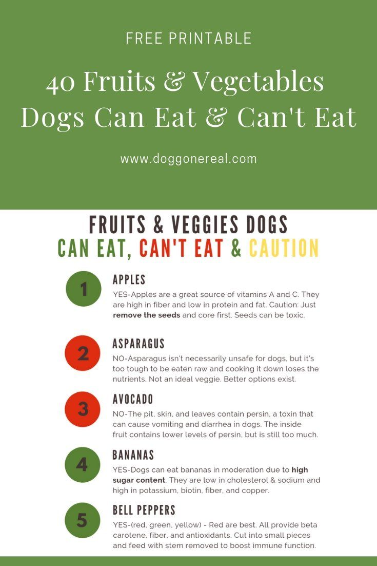 Free Printable 40 Fruits And Vegetables Dogs Can Eat And Can T Eat Fruitsandvegetablesfordogs Realfood Can Dogs Eat Foods Dogs Can Eat Fruit Dogs Can Eat