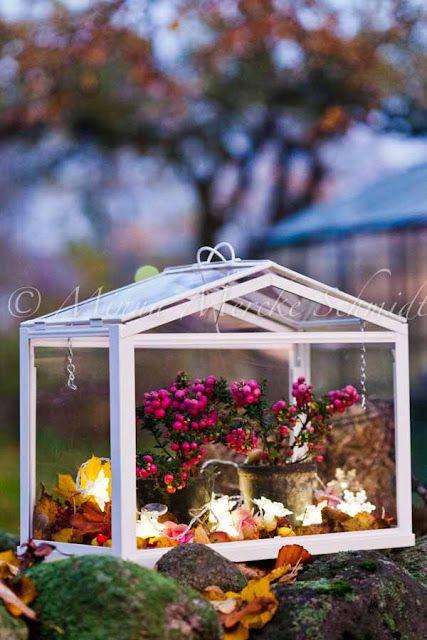 Höstplantering i växthuset * Autumn in the green house | blomsterverkstad | Sköna Hem