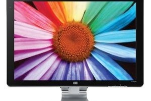 HP W2408H 24-Inch LCD Monitor