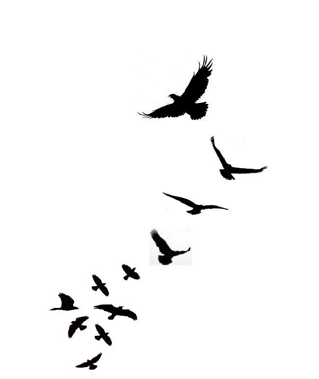 Flying Birds Tattoo Stencil