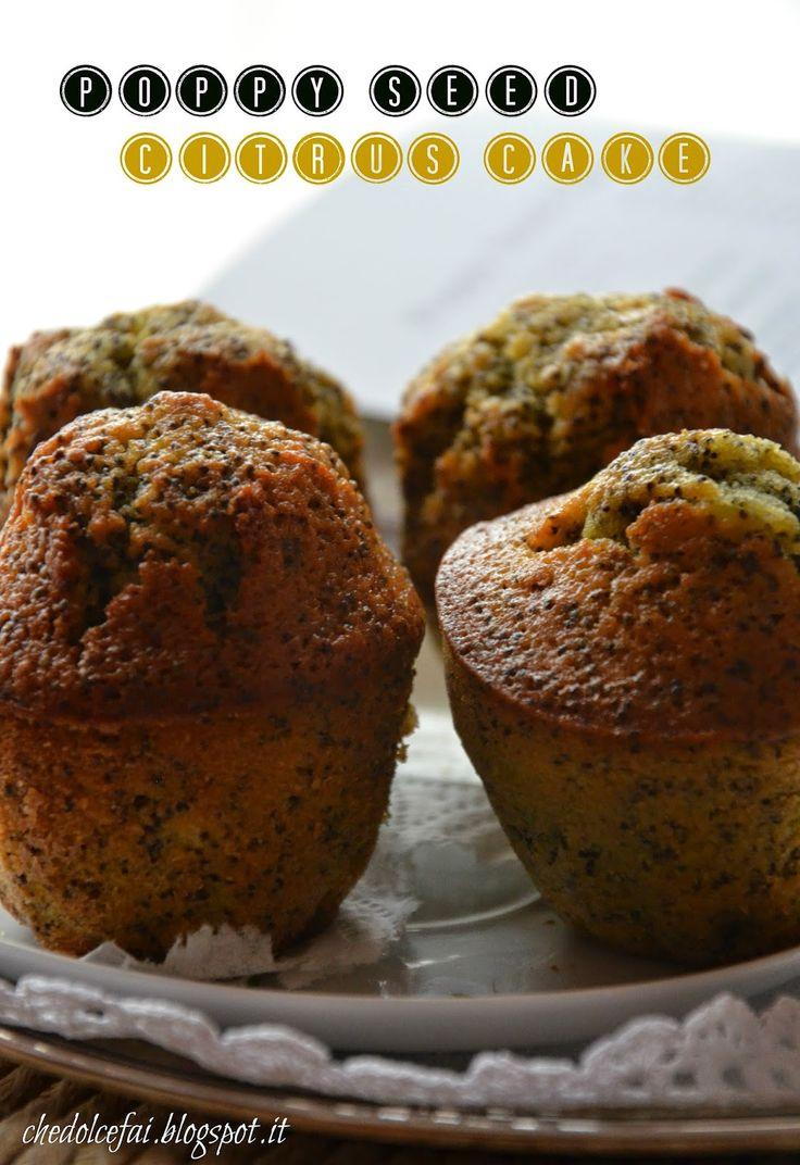 Che dolce fai?: POPPY SEED CITRUS CAKE