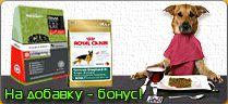 Корм для собак и щенков - ежедневный рацион, диеты, специальные корма