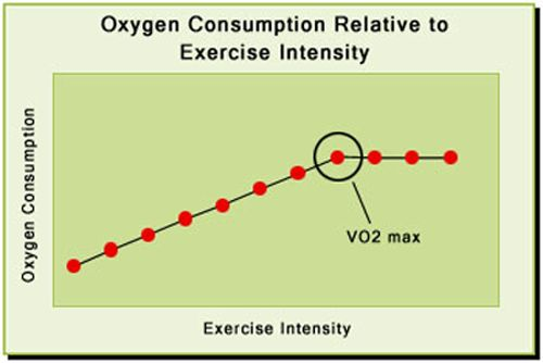 Image result for vo2 max and body weight