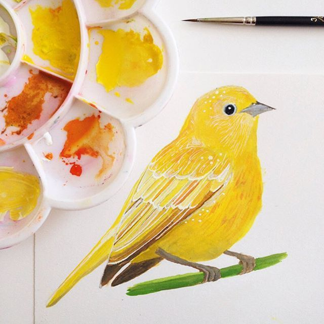 Painting A Day Sketchbook By Printspiring Yellow Bird Painted With Gouache Watercolours Www Instagram C Bird Painting Acrylic Bird Drawings Birds Painting