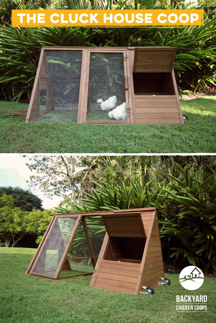 12 best the cluck house chicken coop images on pinterest