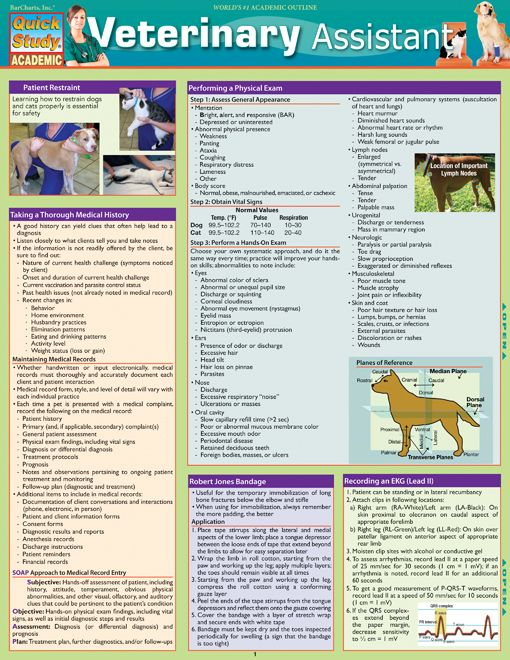 Veterinary Assistant thought process very interesting for all animal owners