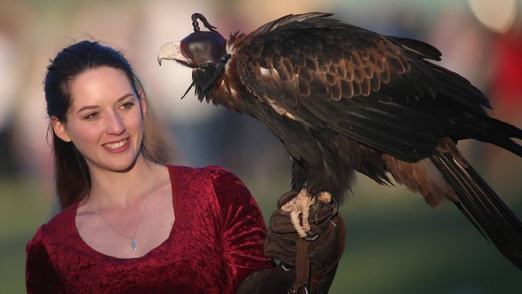 Hawkesbury goes medieval  with falconing