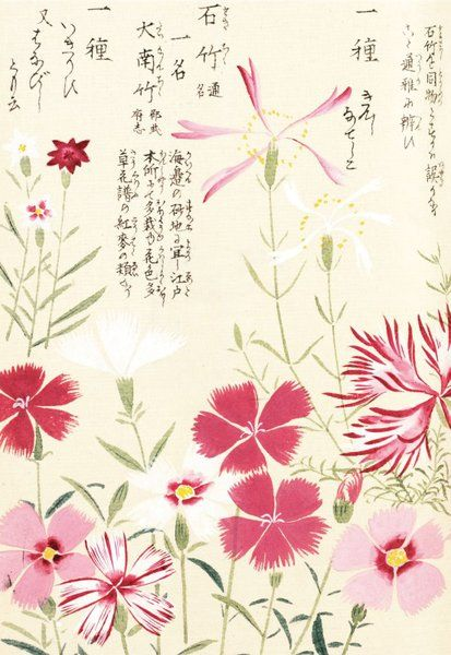 Honzo Zufu [Pinks] [Illustrated manual of medicinal plants] by Kan'en Iwasaki (1786-1842). Wood block print and manuscript on paper. Japan, 1828