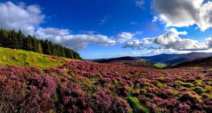 Prachtige landschap Ierland