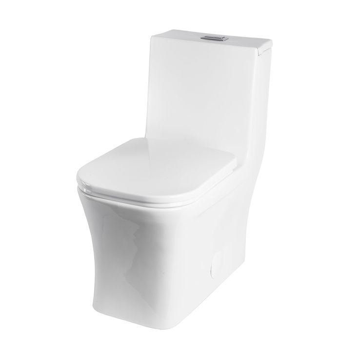 BAI high efficiency dual flush contemporary toilet. Complete your modern bathroom with our contemporary back to wall, one piece, dual flush toilet. Manufacture