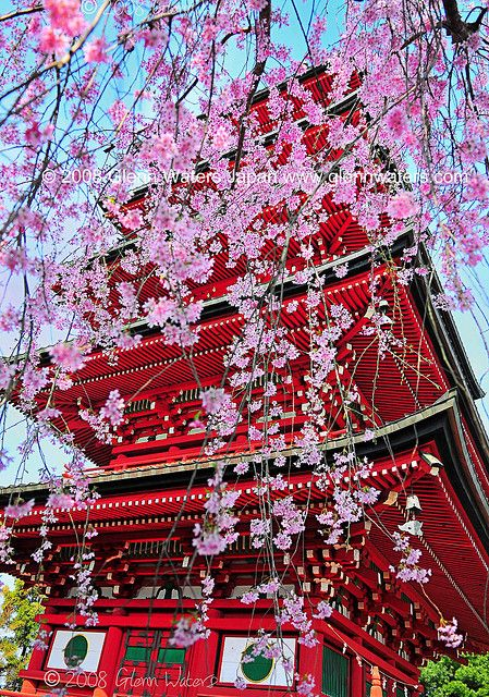 Gojunoto. 1,000 visits to this photo. Thank you. by Glenn Waters ぐれんin Japan., via Flickr