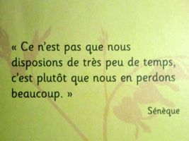 #Sénèque - 15 #Citations #Quotes #temps #tempsperdu #literature #littérature