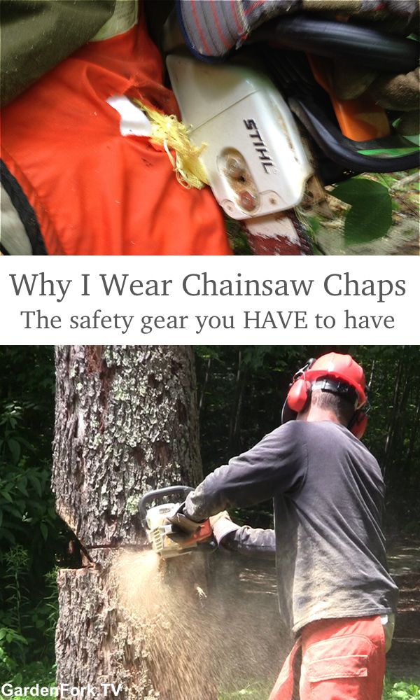 I wear chainsaw chaps, you should too. Here's all the PPE gear I use when using a chainsaw to cut down a tree. This safety gear is not expensive, and it can save body parts.
