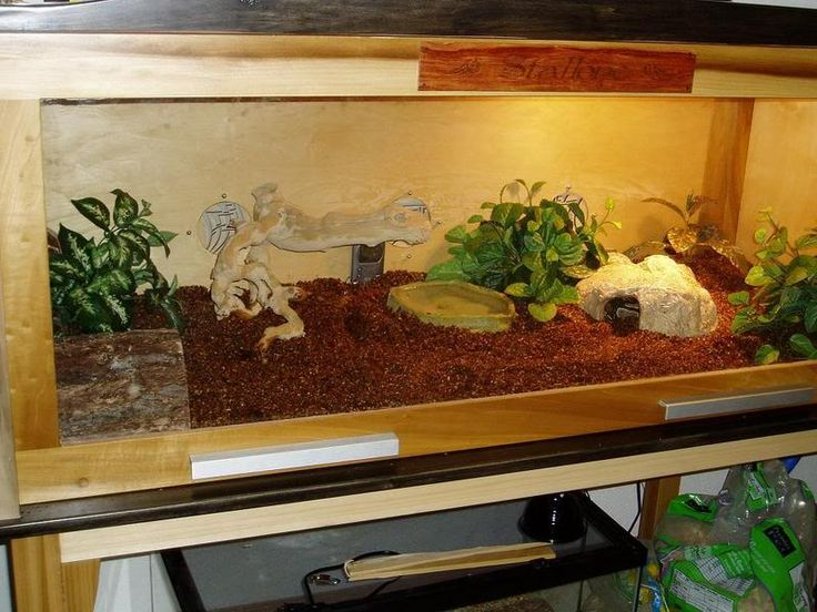 43 Best Images About Reptile Cages On Pinterest Python