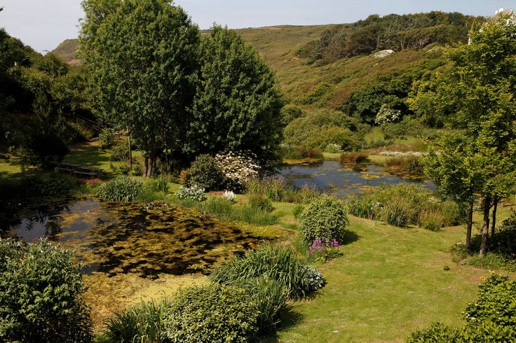 Ponds on the property are stocked with ornamental fish. Beyond them is National Trust land with a path to the sea. - Homes on the Cornish Coast - Slide Show - NYTimes.com