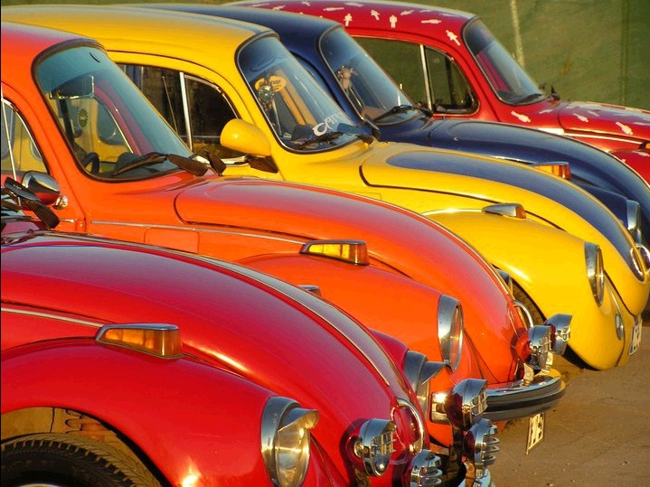 BEETLEs _____________________________ Reposted by Dr. Veronica Lee, DNP (Depew/Buffalo, NY, US)