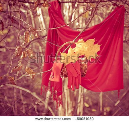 Red accessories (gloves, scarf) in the autumn park - stock photo