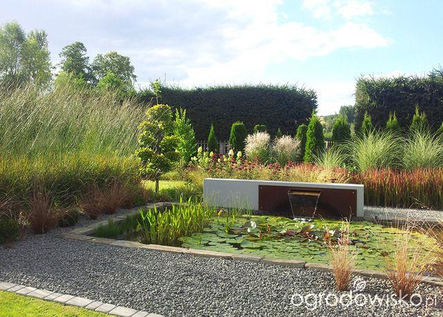 Moja codzienność - ogród Oli - strona 1538 - Forum ogrodnicze - Ogrodowisko