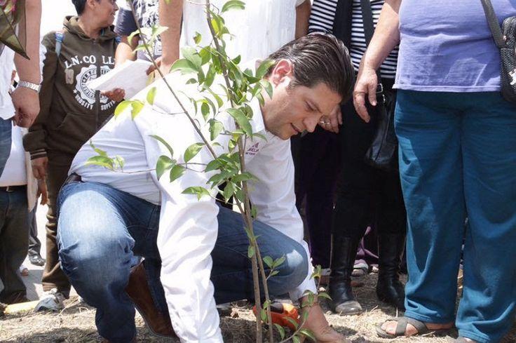 En esta primera etapa se tiene proyectado plantar 2 mil 500 árboles de las especies pino michoacano, cedro blanco y pino greggi, informó la Secretaría de Desarrollo Metropolitano e Infraestructura ...