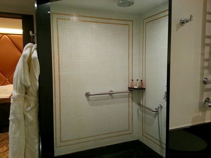 the generously-sized shower area