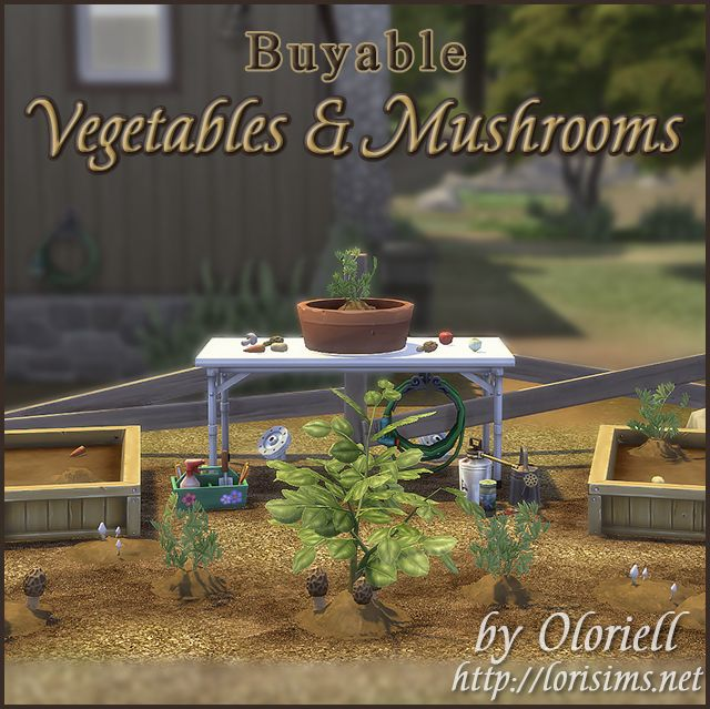 Vegetables & Mushrooms for TS4 by Oloriell