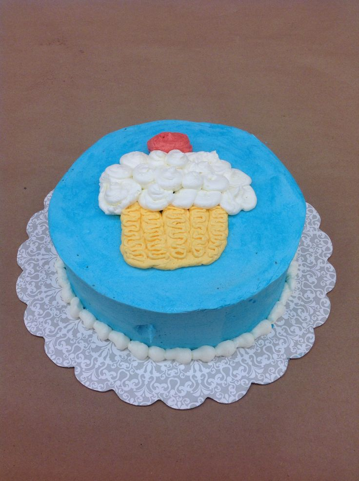 Mini Curi Just Completed Her First Buttercream Cake In Course 1