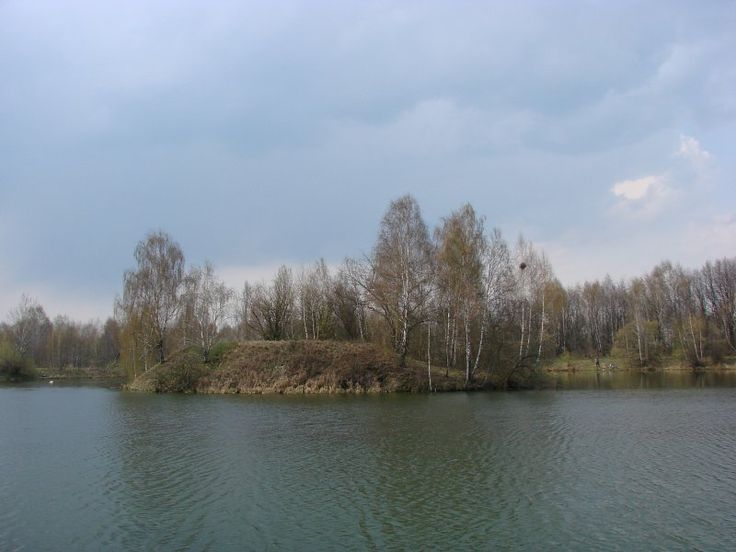STAWY   NA  KRZYWIU http://www.garnek.pl/bog1dan/9357672/stawy-na-krzywiu