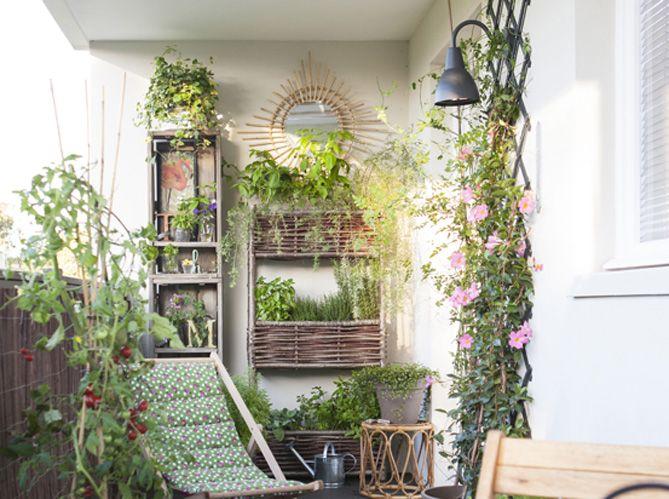 #balcon #fleuri #plantes #transat