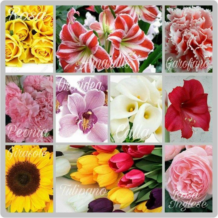 I fiori sono sempre i protagonisti nelle grandi storie d'amore... Sono la bellezza allo stato puro e sono indispensabili per la creazione di un'atmosfera magica. https://www.facebook.com/SilviaForte.Eventi/ #fiori #allestimentifloreali #matrimonio #nozze #weddingplanner #senigallia #marche #Emiliaromagna