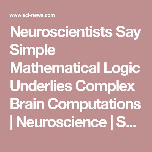 Neuroscientists Say Simple Mathematical Logic Underlies Complex Brain Computations   Neuroscience   Sci-News.com