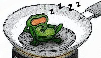 THE BOILING FROG SYNDROME (Must Read) | Anand babu | LinkedIn