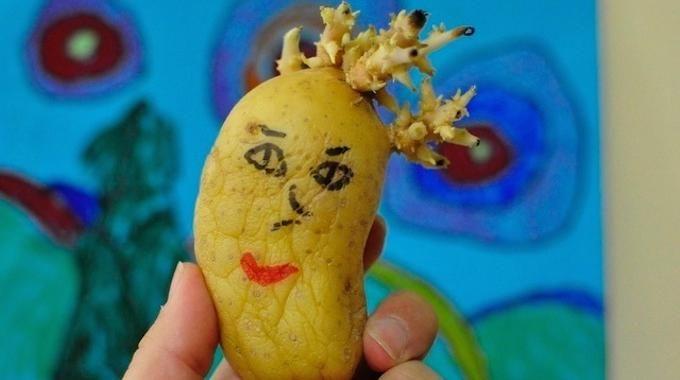 Pour éviter que vos pommes de terre germent trop rapidement, il existe une vieille astuce de grand-mère, qui marche à tous les coups. J'ai tendance à toujours acheter les pommes de terre en gros
