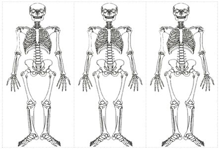 Gran varietat de fitxes imprimibles relacionades amb el cos humà, geografia, sistema solar....