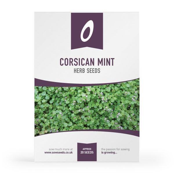 Corsican Mint Herb Seeds Corsican Mint Herb Seeds Mint Herb