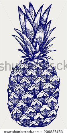 Pineapple Stok Fotoğraflar, Görseller ve Resimler | Shutterstock