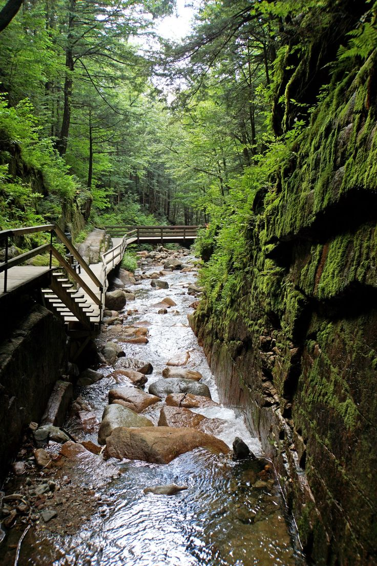Franconia Notch State Park, New Hampshire, USA | by Dennis Jarvis