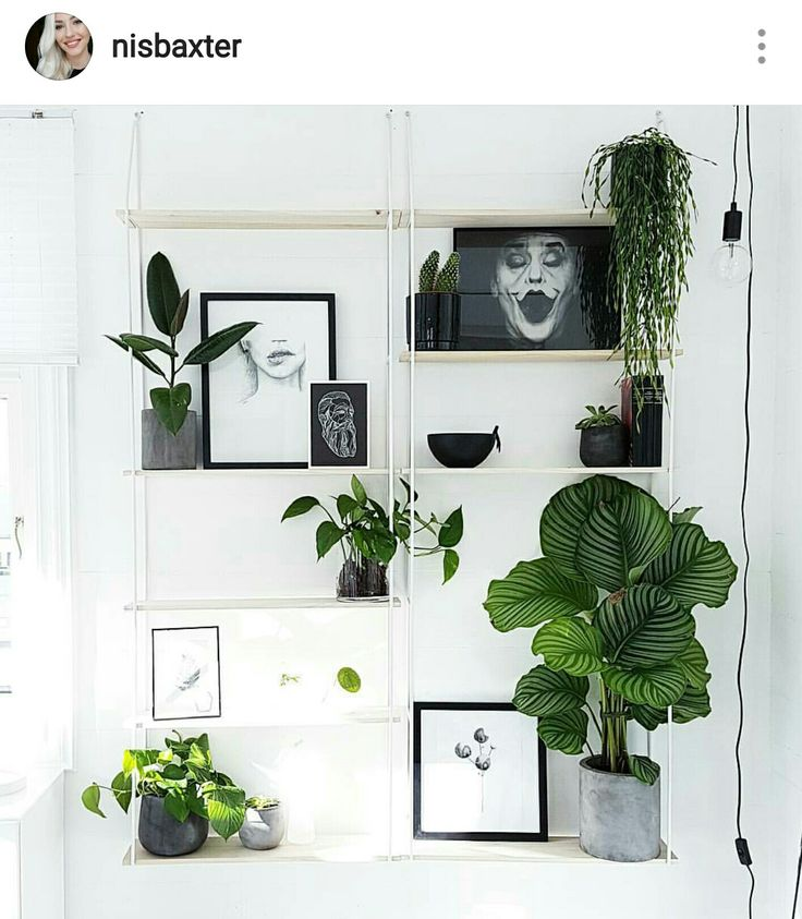 My lovely shelf from sostrene grene with a boho scandinavian urban plant twist!   Instagram :nisbaxter