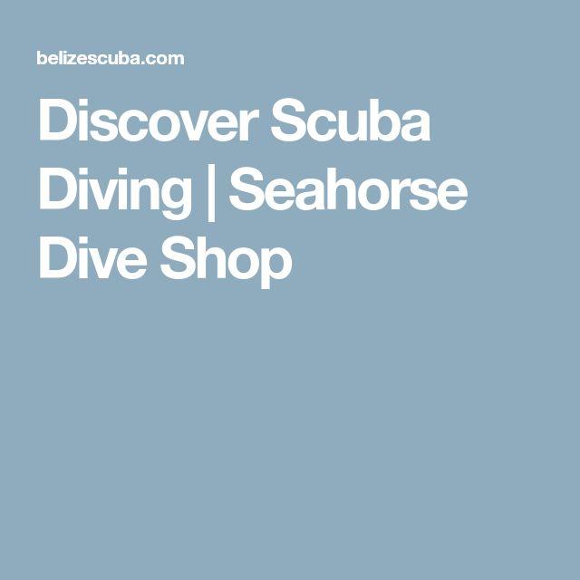 Discover Scuba Diving | Seahorse Dive Shop $175pp