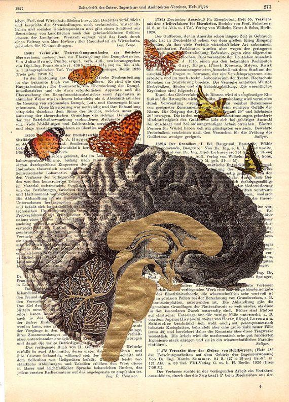 Golden Brain Anatomy Print