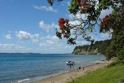 Martins Bay is a picturesque, hidden gem located in the Rodney district, a one hour drive north of central Auckland and less than 1.5 hours from Auckland International Airport.  The nearest large town is Warkworth (15 minutes drive), which has a full range of services such as a medical centre and supermarket. On the way to Martins Bay is Snells Beach, which has small range of shops  such as The Warehouse, restaurants, takeaways, chemist , petrol Station and mini supermarket.