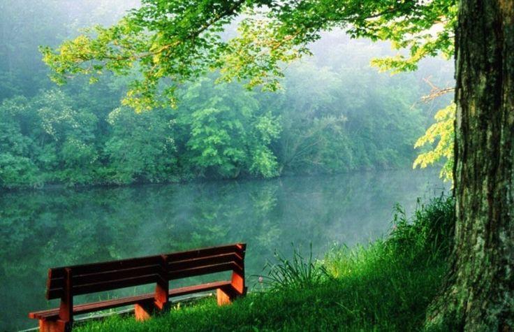 Reimprieteneste-te cu natura!