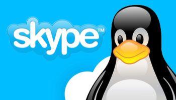 Skype para Linux ganha suporte a chamadas de vídeo em grupo - EExpoNews
