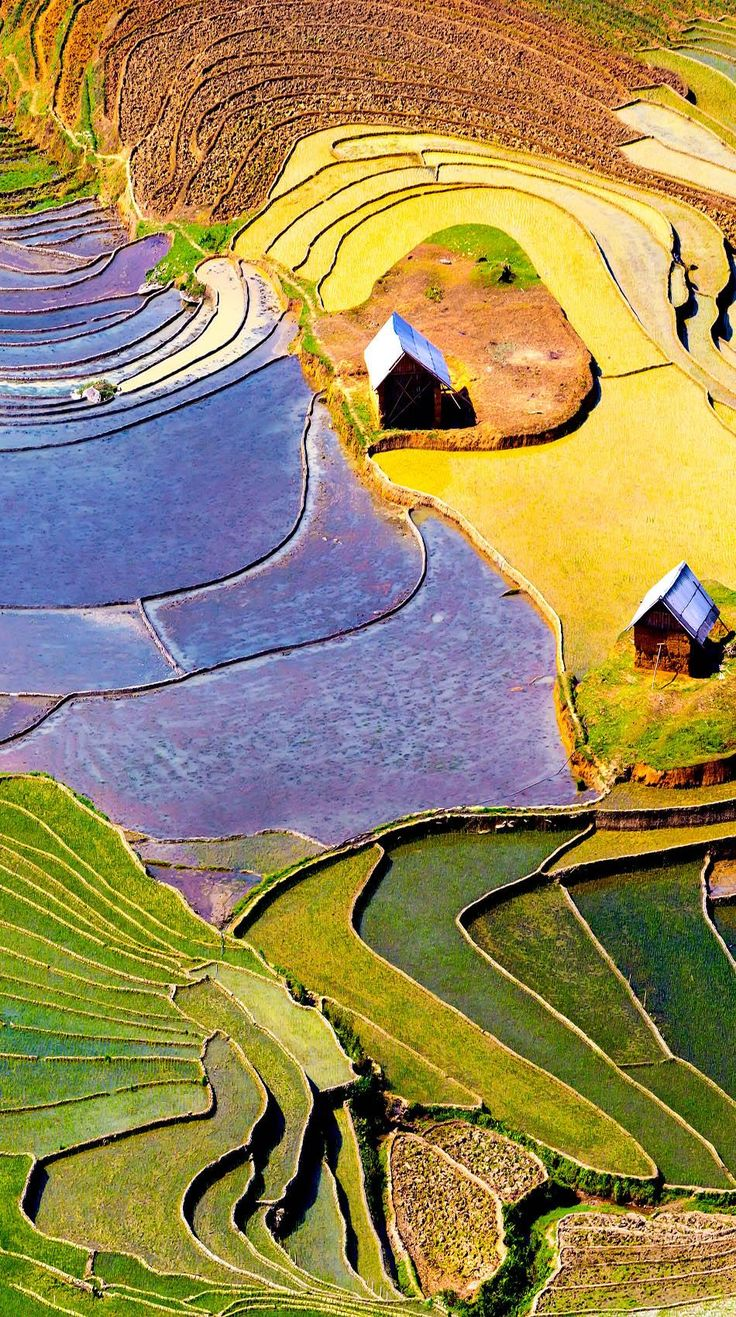 Beautiful terraced rice field in Lao cai province in Vietnam | 17 Unbelivably Photos Of Rice Fields. Stunning No. #15